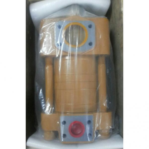 IPH-4B-32-20 Υδραυλική αντλία με γρανάζια