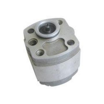 QT2323-6.3-6.3MN-S1162-A Υδραυλική αντλία με γρανάζια
