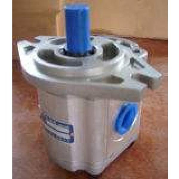 IPH-5B-50-11 Υδραυλική αντλία με γρανάζια